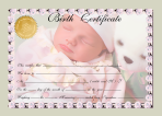 birth_certificate__green_multi_by_afox2004 (00000002)